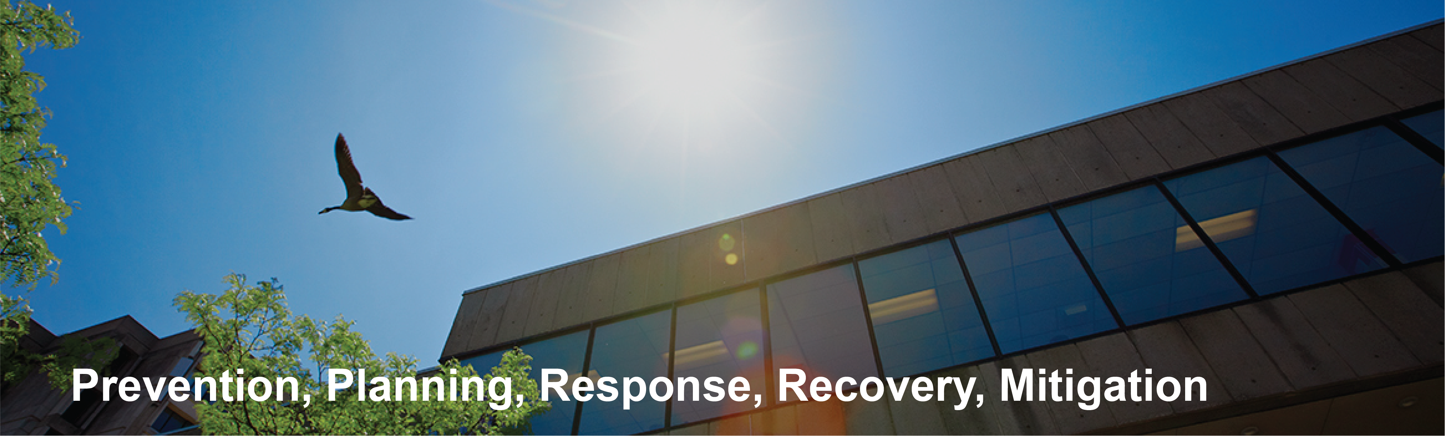 Protection, Planning, Response, Recovery, Mitigation